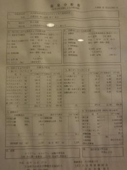 DSCF4379.jpg