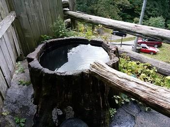 根っこ風呂1.jpg
