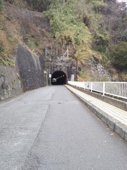 観魚洞隧道 (1).JPG